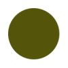 Tapijt op maat? Kies je plantaardig geverfde kleuren: moss.